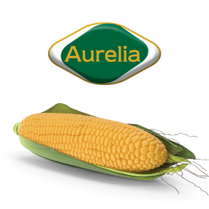 AURELIJA kukuruzni koncentrat